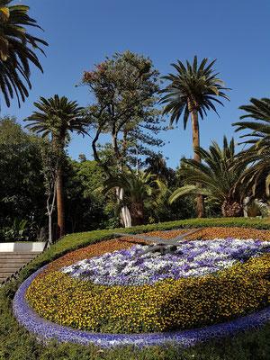 Blumenuhr im Park Sanabria