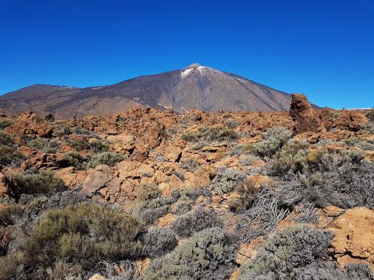 Wanderweg zu den ockerfarbenen Felsen mit Blick auf den Pico del Teide
