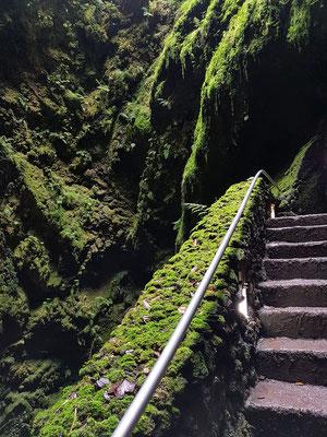Algar do Carvão, 338 Stufen führen in die Tiefe der Höhle