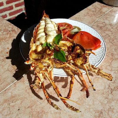 Lobster auf Bestellung für 18 CUC