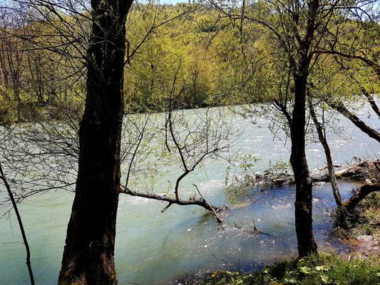 Fluss Tara
