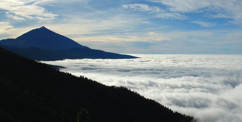Über der Passatwolke. Blick von der TF 24 nach W zum Pico de Teide
