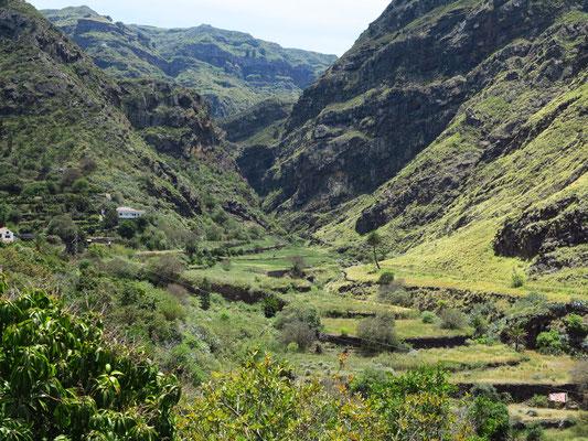Blick nach Südosten in das fruchtbare Tal von Agaete mit subtropischer und tropischer Vegetation