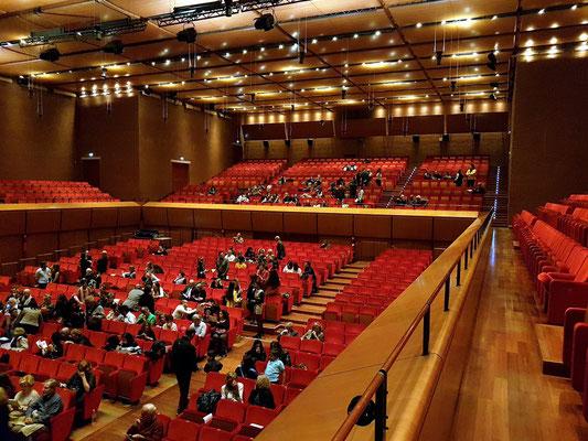 Sala Sinopoli, Blick vom Seitenrang zum hinteren Teil der Konzerthalle