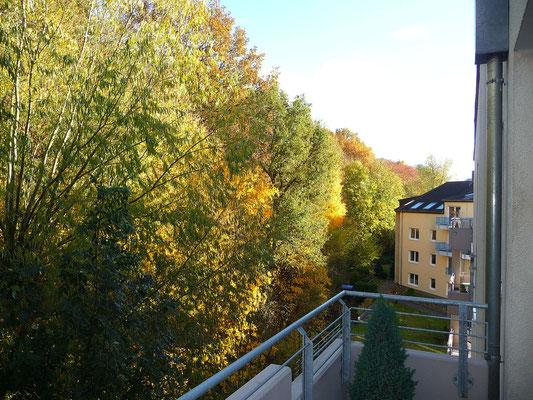Blick vom Balkon auf den alten Bahndamm, 12.11.2012