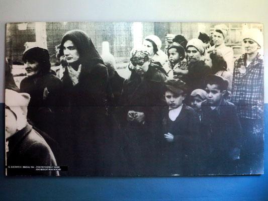 KL Auschwitz II, 1944. Juden aus Ungarn an der Rampe
