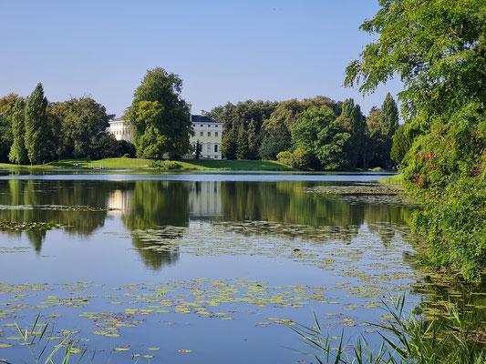 Blick zum Wörlitzer Schloss