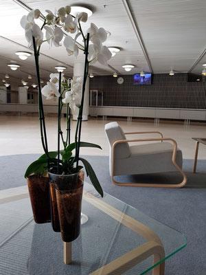 Finlandia-Halle, Möbeldesign von Alvar Aalto