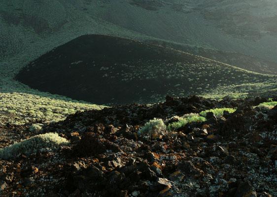 Aschenkegel und Euphorbiensträucher (Tabaiba) bei Arenas Blancas