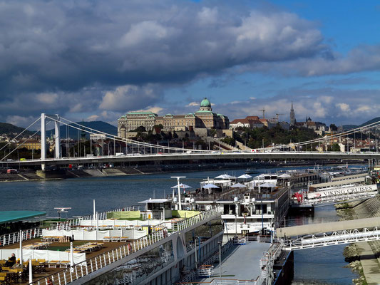 Donau mit Elisabeth-Brücke (Erzsébet hid) und Burgpalast