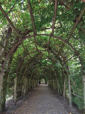 Im Schweriner Schlossgarten