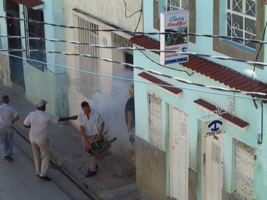 Santiago de Cuba, allwöchentliche Desinfektion der Häuser