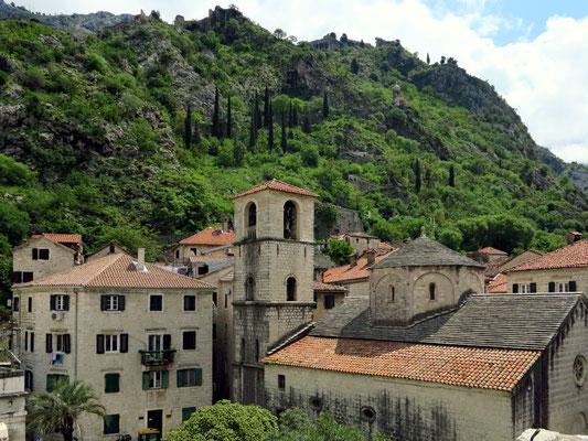 Kirche St. Mary Collegiate in der Altstadt von Kotor von 1221,  ehemalige frühchristliche Basilika aus dem 6. Jh., Blick von der nördlichen Stadtmauer