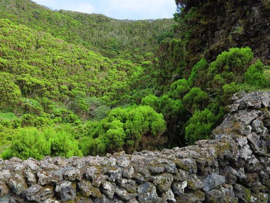 Algar do Carvão, Caldeira neben dem Eingang