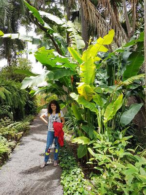 Sabine N. Hernández im Jardín Botánico