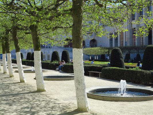 Brüssel, Baumallee am Park Mont des Arts