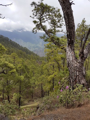 La Cumbrecita mit Blick in die Caldera de Taburiente