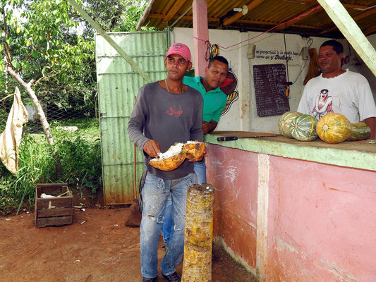 Nach dem Genuss der Kokosmilch wird das Fruchtfleisch gegessen.