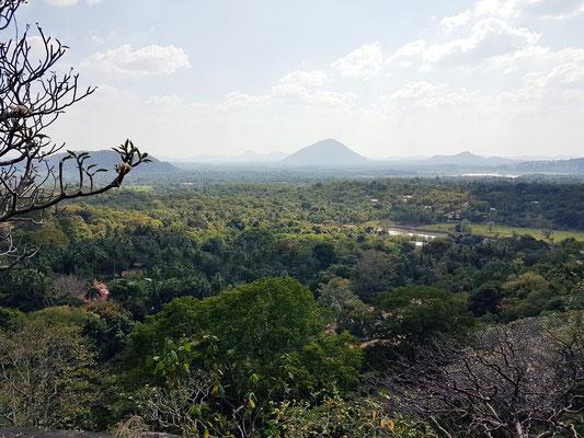 Umgebung von Dambulla, Blick vom Höhlentempel hinunter