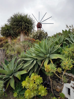 """Ehemalige Getreidemühle """"El Molino"""" und Gartenanlage (mit Drachenbäumen) von Ramón y Vina"""