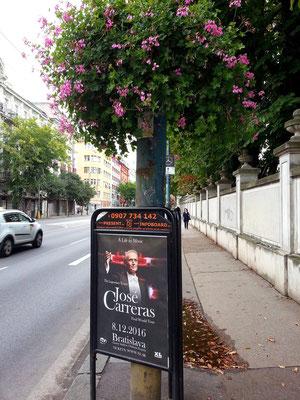 Štefánikova, Ankündigung eines Konzertes mit José Carreras