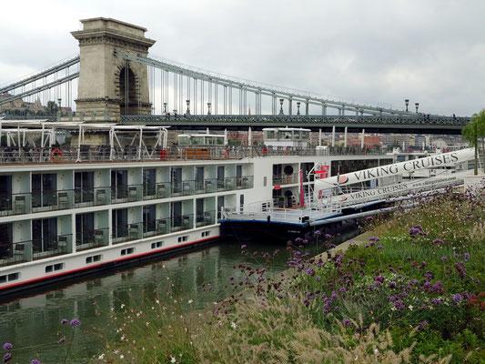 Kreuzfahrtschiff an der Donau im Bereich der Kettenbrücke