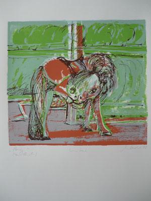 Pony - Juni