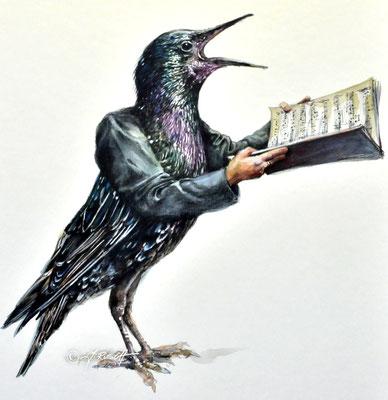 """""""Gesangsstar"""" Aquarell und Zeichnung auf Karton 50 x 40 cm Preis 880.- €"""