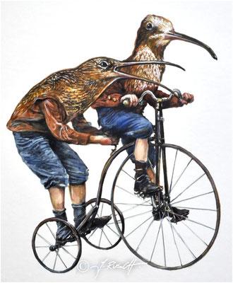 """""""Brachvögeldreirad"""" Aquarell und Zeichnung auf Karton Format 42 x 36 cm Preis 980.- €"""
