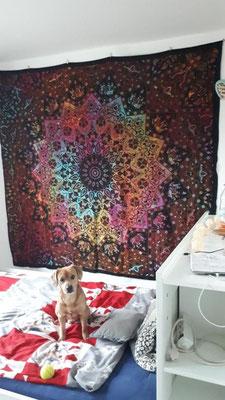 Buntes batik Mandala Tuch im Schlafzimmer