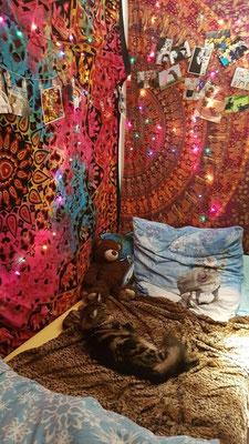 Lieblingsplatz mit bunten Mandala Tüchern