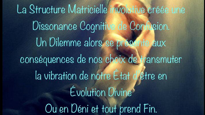 Micro-Ostéo Digitale® à Tours - Jean-Philippe Bocquet - 37000