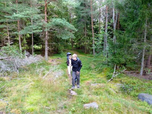 Die erste Wanderung auf der Insel Värdö
