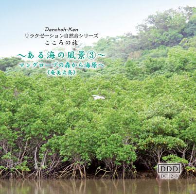 海の風景《海No.3マングローブの森から海原へ》