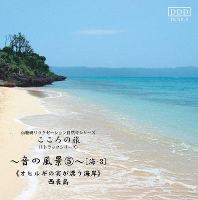 音の風景《音No.5オヒルギの実が漂う海岸》
