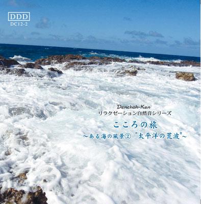 海の風景《海No.2太平洋の荒波》