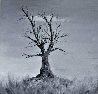 Le Chêne (huile 80x80