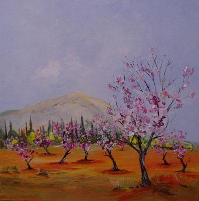 L'arbre en fleurs (huile 80x80)