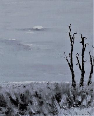 Nature 1 (huile 46x38)