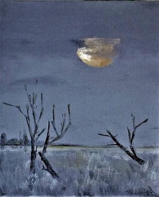 Un soir à l'étang (huile 61x50)
