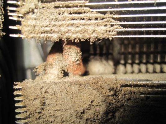 so kann ein Computer nach 2 Jahren auf Teppichboden stehend einen Hitzeschaden bekommen