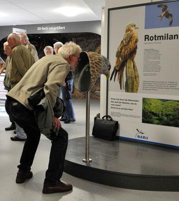 Franz-Josef Göllner, stellvertretender Vorsitzender des NABU Edertal, schaut durch die Milanmaske, um die erstaunliche Sehfähigkeit des Greifvogels zu erkunden.