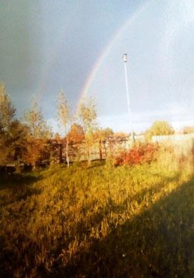 Фото Дмитрия К., 1а класс