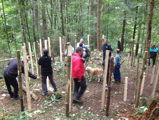 Teilnehmer vom Bergwaldprojekt