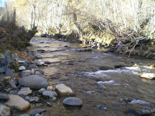 Río de Orallo