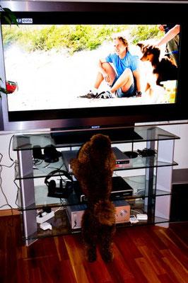 Dann werden alle wegen MIR vor dem Fernseher sitzen und …