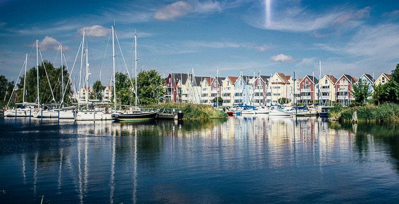Greifswald Landscape V