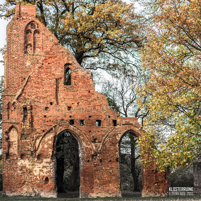 Klosterruine in Eldena – Greifswald