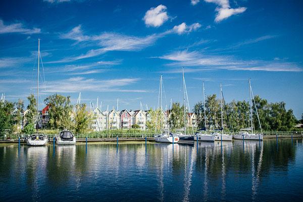 Greifswald Landscape VI