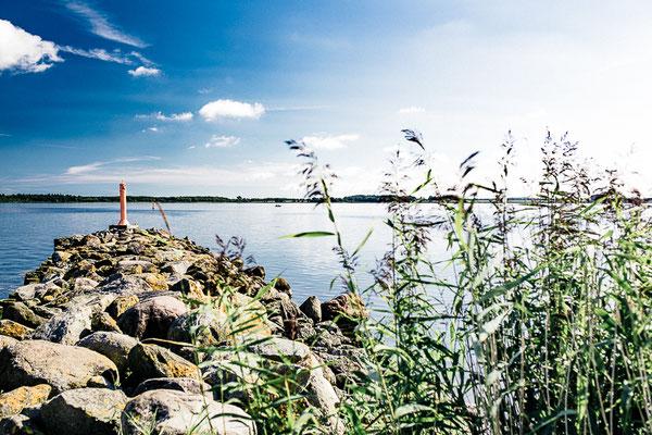 Greifswald Landscape III